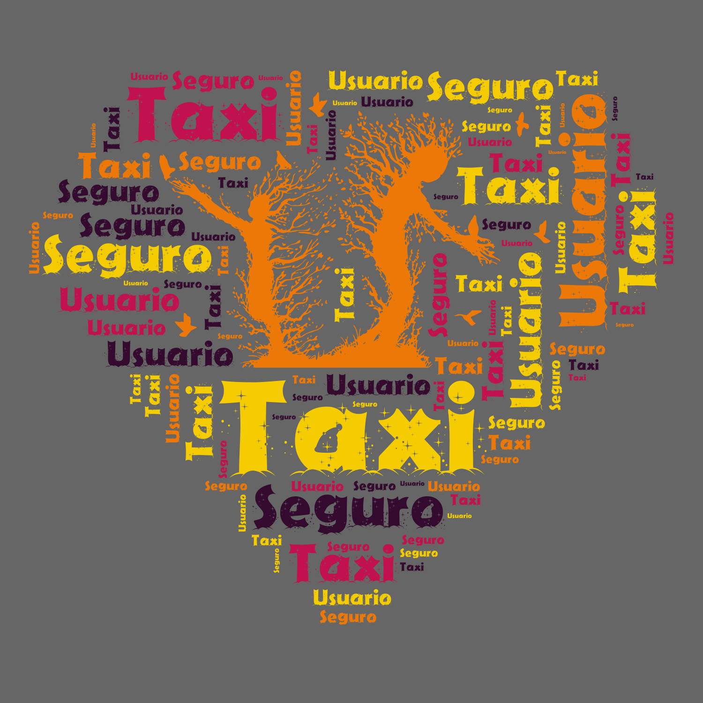 Taxi Seguro Usuario
