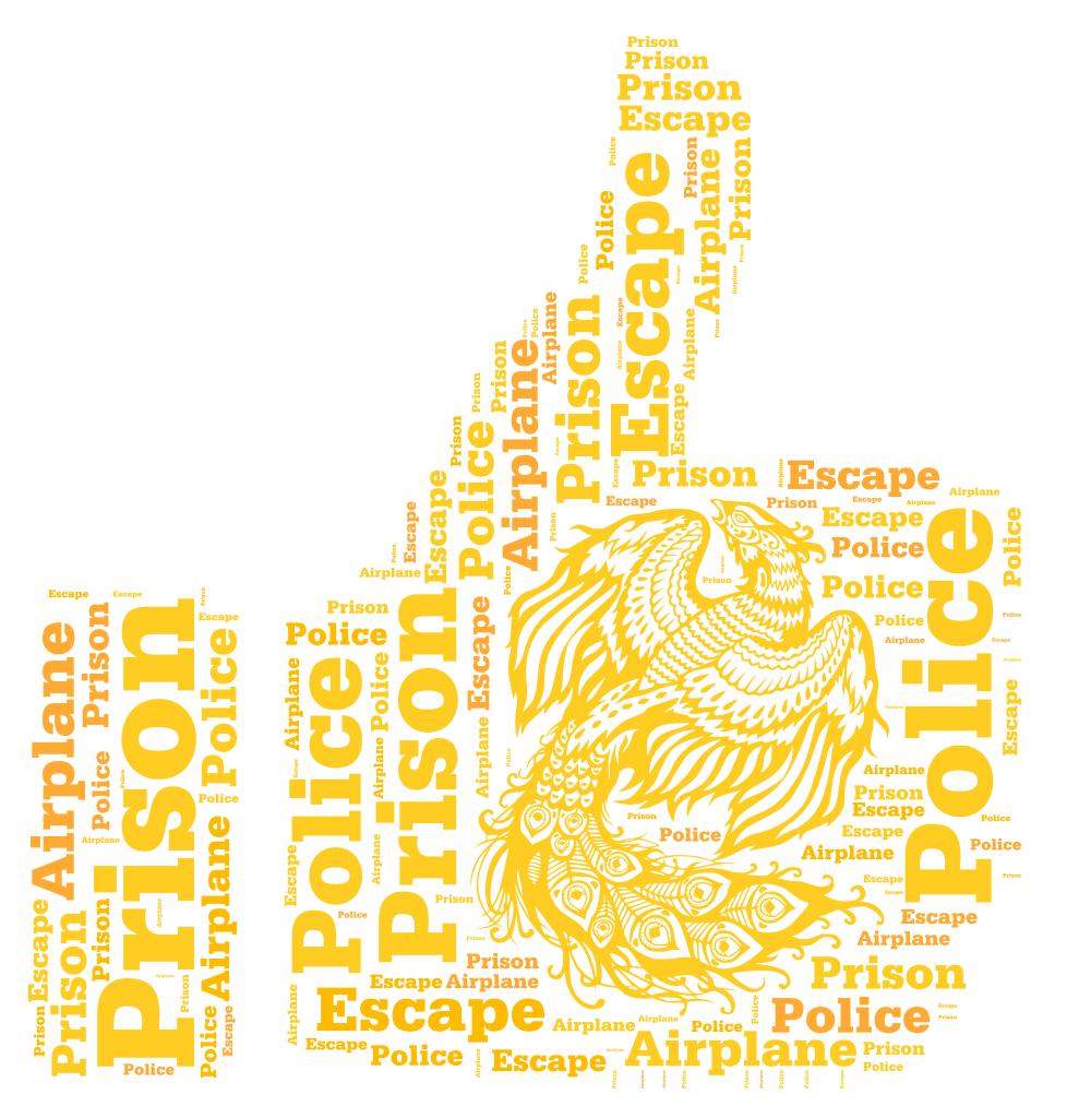 Prison Escape Police Airplane